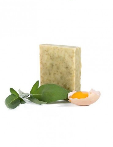 Solid shampoo for oily hair - Organic - Goat's milk